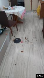 Earthquake: Goúves Greece,  September 2021
