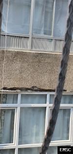 Earthquake:  Turkey,  September 2019